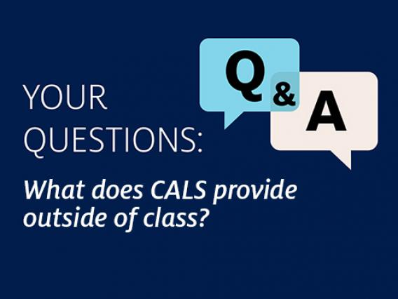 Q&A Question: What does CALS provide outside of class?
