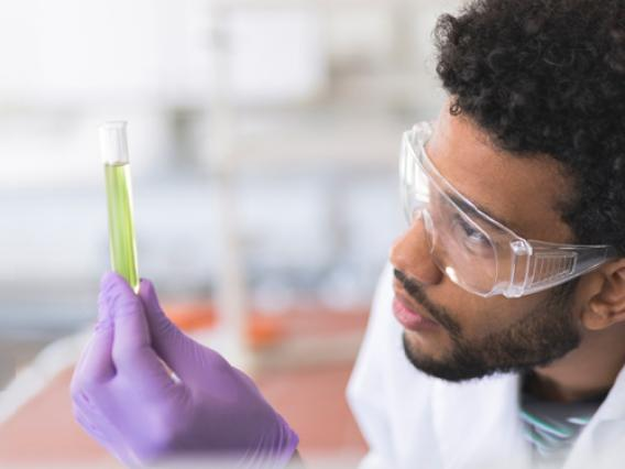 A microbiology student wearing gloves and safety googles examines the contents of a test tube.