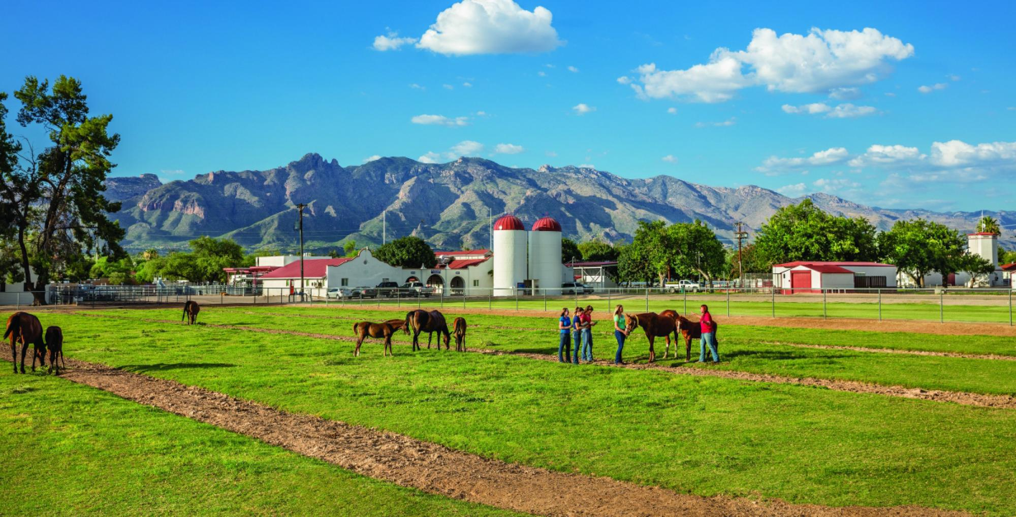 A group of students receiving field instruction at the Campus Agriculture Center